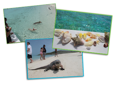 Photos of families, vacationers, and fish playing in the Great Exuma Islands, Bahamas